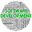 Software development concept in word tag cloud — Foto de stock #12226407