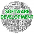 Software development concept in word tag cloud — ストック写真