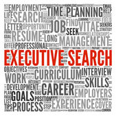 Executive search concept in word tag cloud — Stock Photo