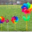 Pinwheel on green grass — Stock Photo