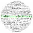 Cultivating Networks concept in word tag cloud on white background — Stock Photo