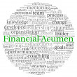 Financial Acumen concept in word tag cloud on white background — Stok fotoğraf
