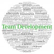 Team Development concept in word tag cloud on white background — Stok fotoğraf