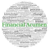Financial Acumen concept in word tag cloud on white background — Stock Photo