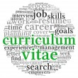 Curriculum vitae  concept in word tag cloud — Stock Photo