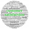 Customer satisfaction concept in word tag cloud on white — Stockfoto