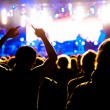 Fans on concert — Stock Photo