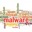 Malware concept in word tag cloud on white background — Zdjęcie stockowe