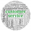 Customer service concept in word tag cloud on white — Stock Photo #13565447