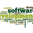 Software development concept in tag cloud on white background — Stockfoto