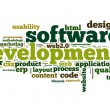 Software development concept in tag cloud on white background — 图库照片