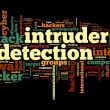 Stock Photo: Intruder detection concept in word tag cloud on black background