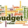 Budget concept in tag cloud on white — Stock Photo