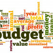 Stock Photo: Budget concept in tag cloud on white