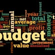 Budget concept in tag cloud on white — Stock Photo #13721778