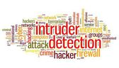 Intruder detection concept in word tag cloud on white background — Stock Photo