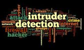 Intruder detection concept in word tag cloud on black background — Stock Photo