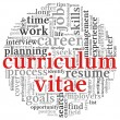 Curriculum vitae concept in word tag cloud — Stock Photo #13898550