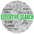 Stock Photo: Executive search concept in word tag cloud