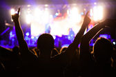 Crowd of fans at night concert — Stock Photo