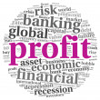 Profit and risk concept on white - Stock Photo