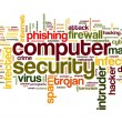 Computer security concept in tag cloud — Stock Photo #16287993