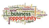 Business opportunity concept in word tag cloud — Stock Photo
