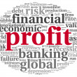 Profit and risk concept on white — Stock Photo #20821445
