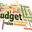 Budget concept in tag cloud — 图库照片