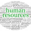 Human resources concept in tag cloud - Stock Photo