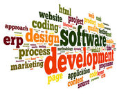 Software development concept in tag cloud — Foto de Stock
