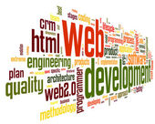 Web development concept in word tag cloud — Stock Photo