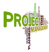 Project management in tag cloud — Stock Photo
