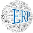 ERP in word tag cloud — Stock Photo #23601327