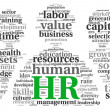 Stock Photo: Humresources concept in tag cloud