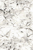 Old scratched paper template — Stock Photo