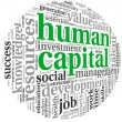 Stock Photo: Humcapital concept in tag cloud