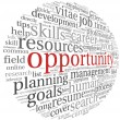 Opportunity concept in word cloud — Stock Photo #27195679