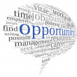 Stock Photo: Opportunity concept in word cloud