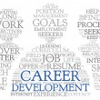 Career development in word tag cloud — Stock Photo