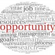 Opportunity concept in word cloud — Stock Photo