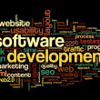 Software development concept in tag cloud — Stock Photo #32942143