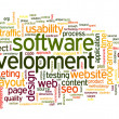 Software development concept in tag cloud — ストック写真