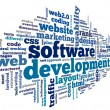 Software development concept in tag cloud — Stockfoto