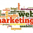Web marketing concept in word cloud — Stock Photo