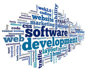Software development concept in tag cloud — Stock Photo