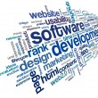 Stock Photo: Software development concept in tag cloud
