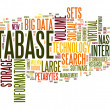 Database concept in word cloud — Stock Photo #35304467