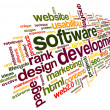 Software development concept in tag cloud — 图库照片