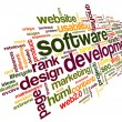 Software development concept in tag cloud — Stock fotografie